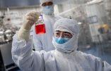 L'origine du covid-19 à nouveau soulevée : l'hypothèse d'une fuite de laboratoire plus que jamais plausible
