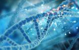 L'OMS milite pour la modification du génome humain. Un commencement avec les vaccins à ARNm ?