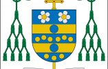 Communiqué de presse de Mgr Viganò concernant l'imposition récente de la vaccination obligatoire dans certains diocèses américains